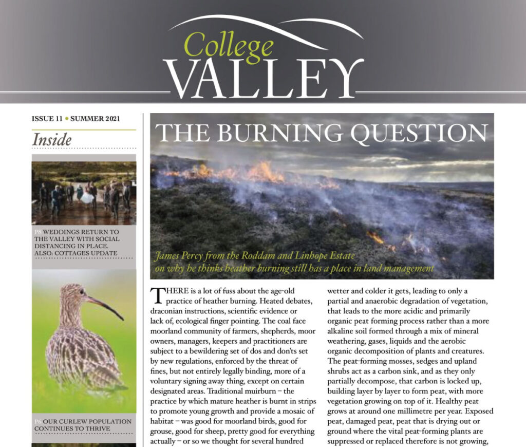 Summer 2021 Newsletter - The Burning Question